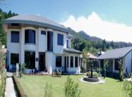 Learn Spanish in Monteverde